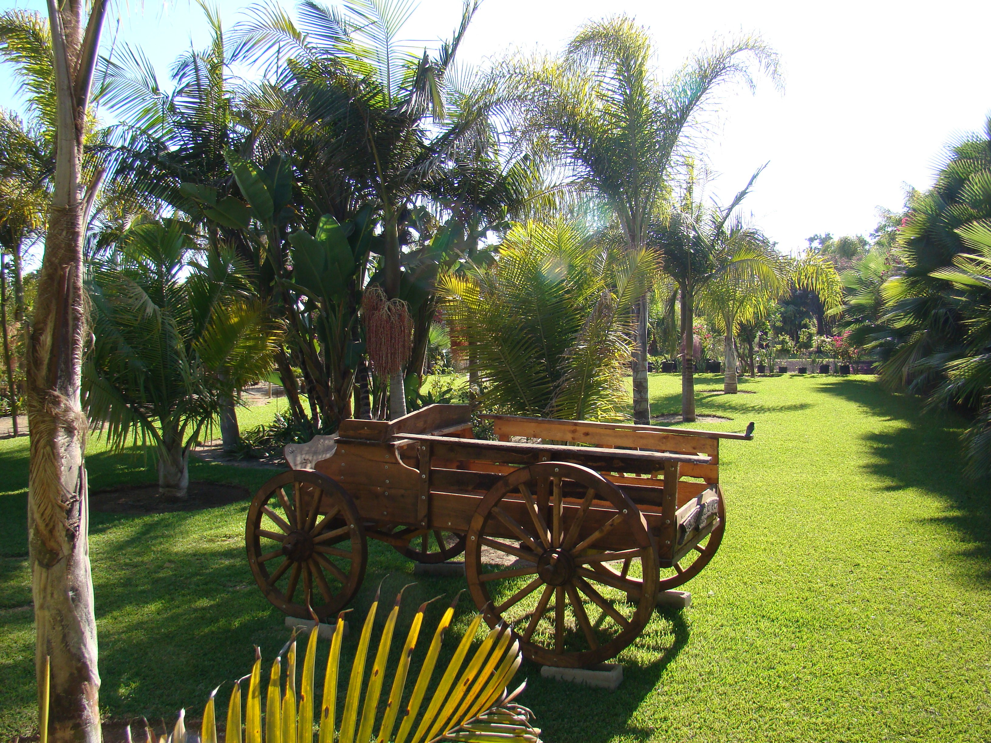 Best san quintin hotel is hotel jardines baja for Jardines mexico